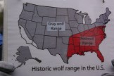 These maps were very enlightening. Notice how large the gray wolf range used to be.