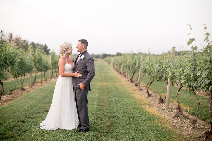 wedding portraits in the vineyards at tomasello winery