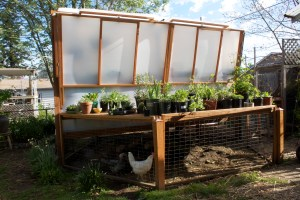 picture of the green house with plant deck