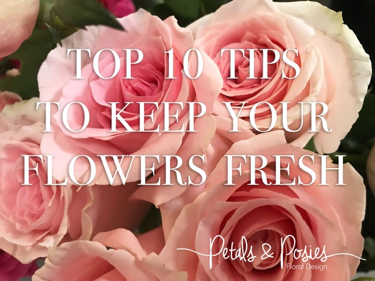 pink Roses with text top tips to keep your flowers fresh
