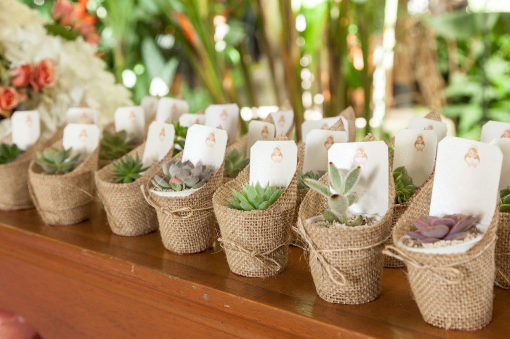 eco-friendly wedding favors plants