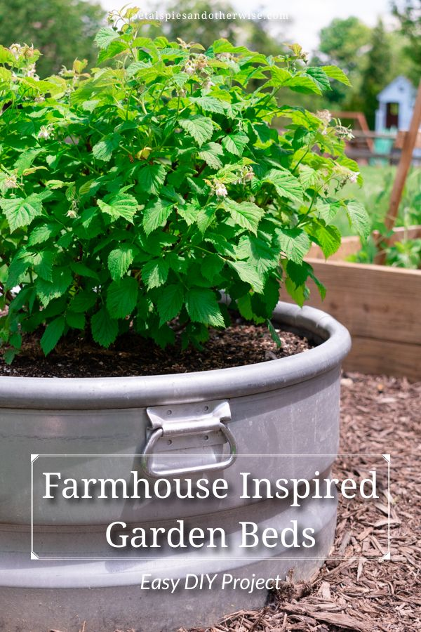 Learn how to easily turn metal stock tanks into beautiful planters.  These farmhouse inspired garden beds are the perfect touch any garden needs!  #gardenbed #metalgardenbed #farmhouseinspired #metalgarden #farmhousestyle #farmhousegarden