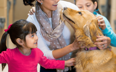 Pandemic Pet Adoption Surge: Pandemic Pooches Are Here to Stay!