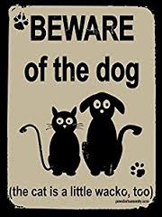 house security by dog and cat image