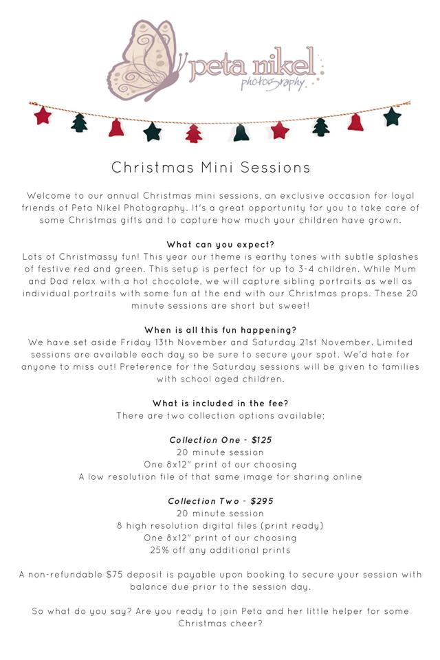 Christmas Minis InfoPackweb copy