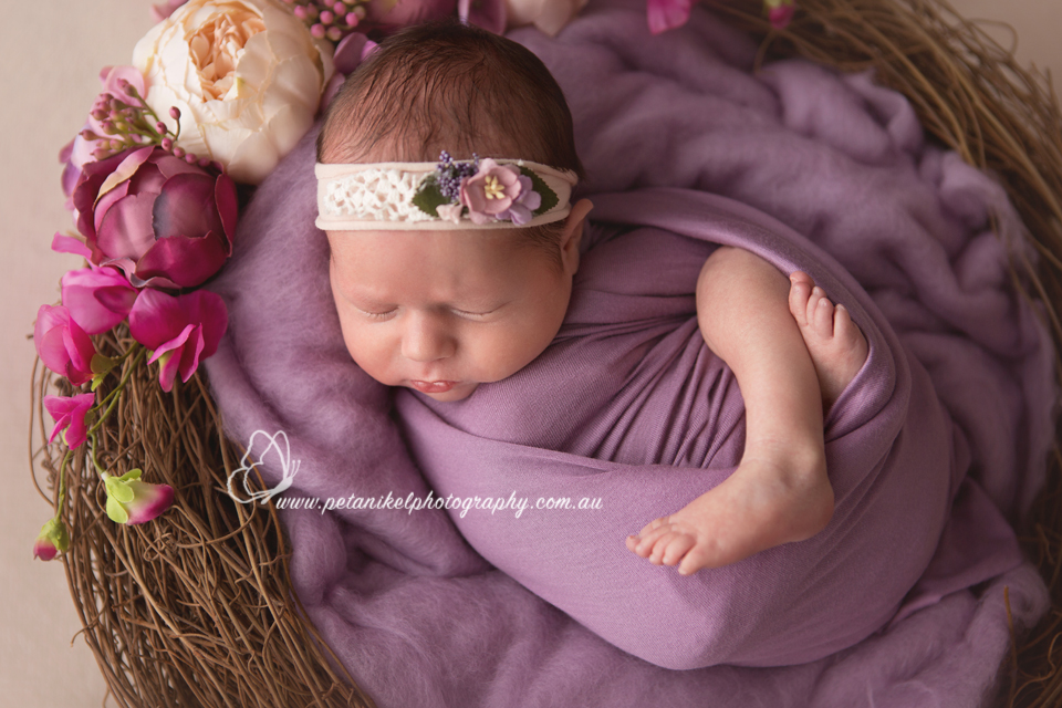 Hobart Newborn Photography