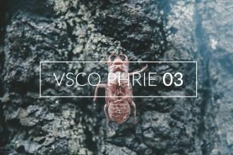 VSCO Phrie 03
