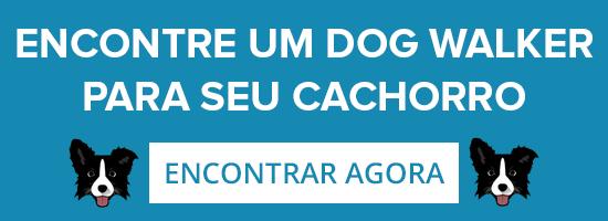 dog-walker-encontre-um-para-seu-cachorro
