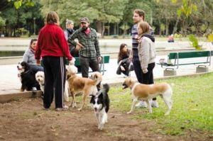 O parque Redenção/Farroupilha é um parque para a família inteira!
