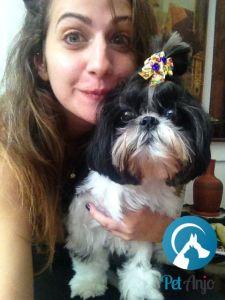 pet-sitter-cuida-de-seu-pet-em-sua-casa