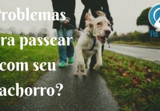 problemas para passear com cachorro