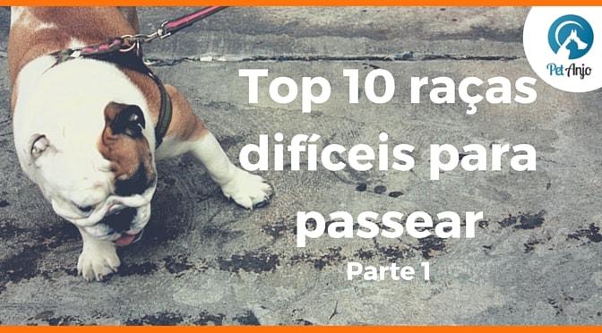 top raças passeio