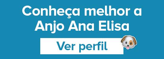 Anjo Ana Elisa CTA