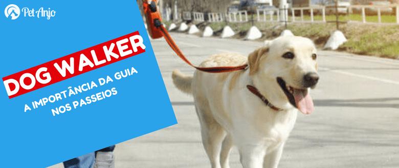 dog walker thumnail importancia da guia nos passeios com cães