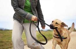 dog-walker-passear-com-cachorro