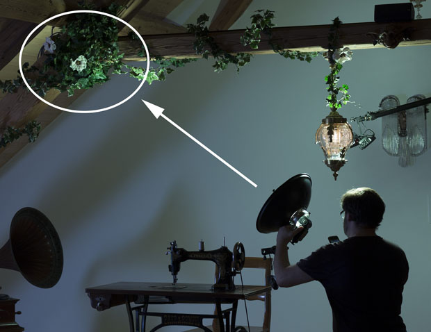 Tutorial: Creating a Surreal, Conceptual Photo Using Zone Lighting 3 zone lighting the ivy