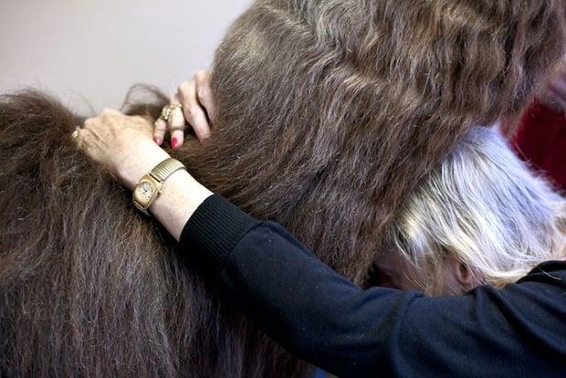 Heartwarming Photos of Therapy Llamas Interacting with Patients at a Hospital llamalove5