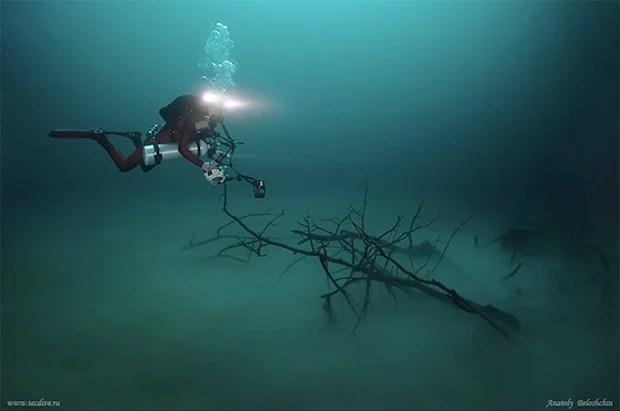 Mesmerizing Photos of Cenote Angelita, an Underwater River underwaterriver1