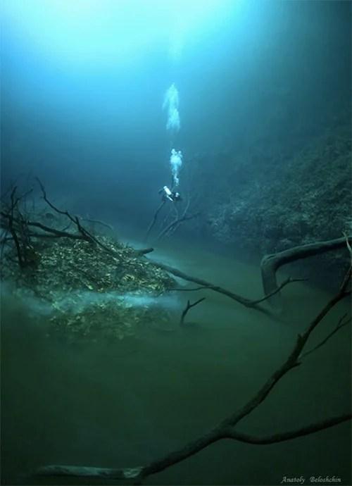 Mesmerizing Photos of Cenote Angelita, an Underwater River underwaterriver5