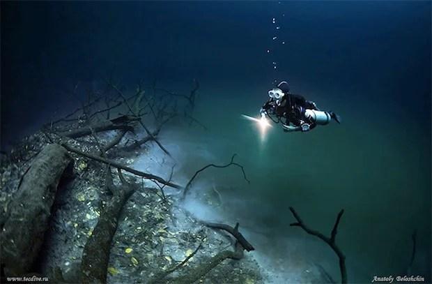 Mesmerizing Photos of Cenote Angelita, an Underwater River underwaterriver6