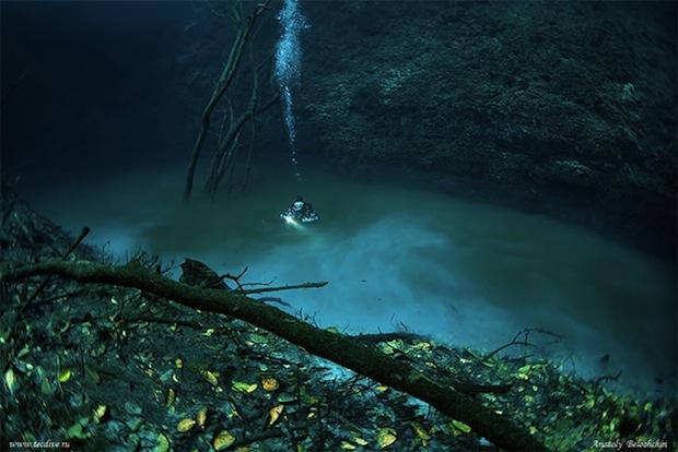 Mesmerizing Photos of Cenote Angelita, an Underwater River underwaterriver7