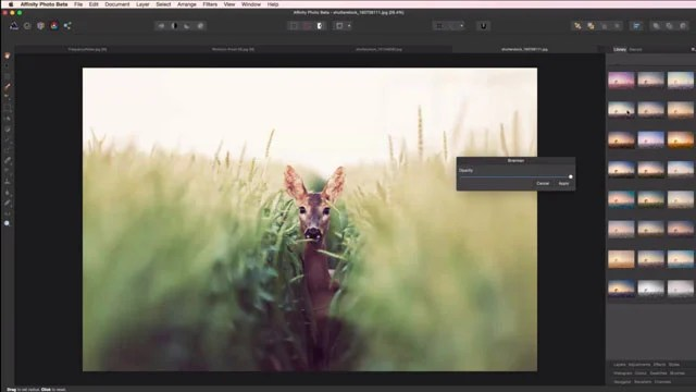 Affinity Photo Is A New Pro Photoshop Alternative For Mac