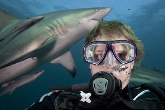 sharkselfie1a