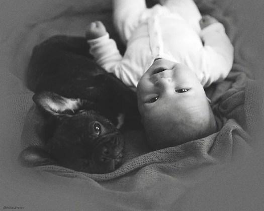 babyandbulldog4