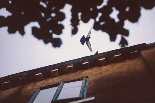 italy_roadtrip_anderslonnfeldt_1500px_09