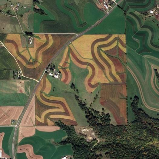 jefferson-grid-4-1024x1024