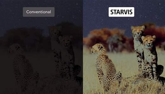 starvishead