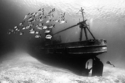 """USS Kittiwake Shipwreck."" Susannah H. Snowden-Smith/UPY 2016"