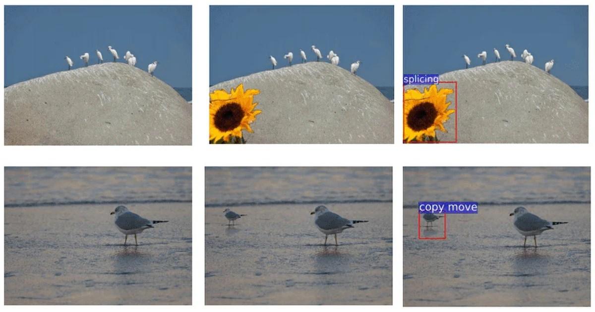 Adobe Using AI to Spot Photoshopped Photos