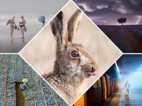 Gli incredibili vincitori dei Sony World Photography Awards 2021