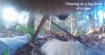 Il primo filmato della Fotocamera Collare girato da un lupo selvatico