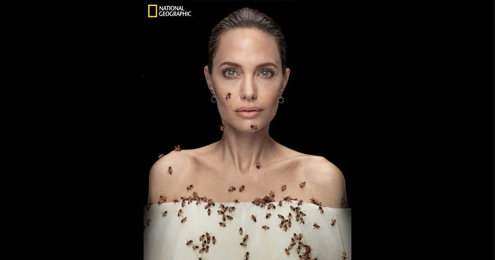 Angelina Jolie fotografata coperta di api per favorire la conservazione
