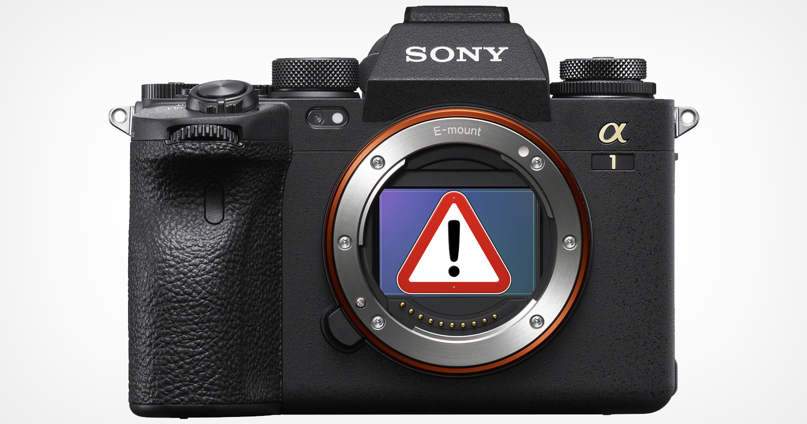Sony Alpha 1 ha un errore IBIS da brivido: rapporto