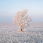 Cosa rende una fotografia di paesaggio avvincente?