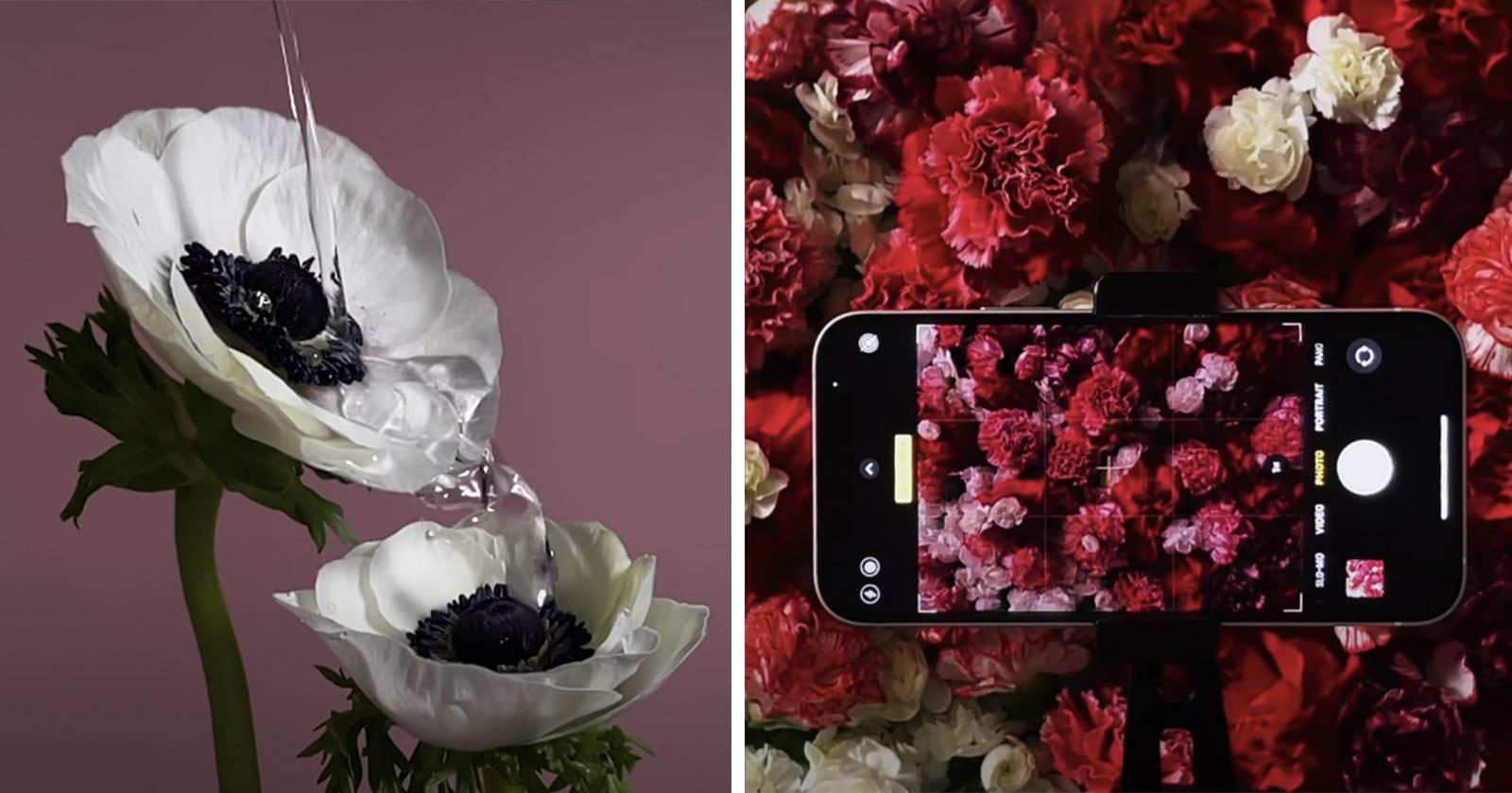 """Apple presenta la sua fotocamera per iPhone 12 con un impressionante video """"Full Bloom"""""""