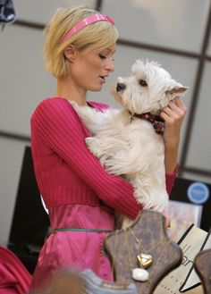 paris hilton white terrier