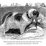 cachorro terra cuidando de pessoas 1812
