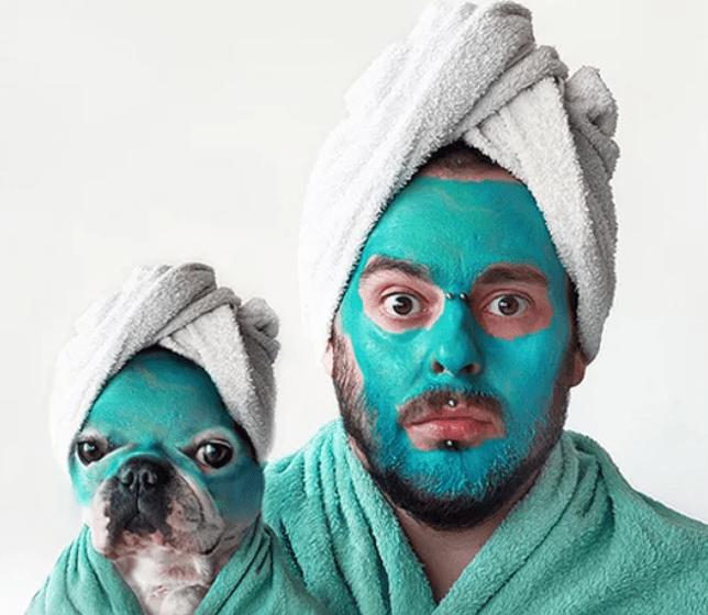 bulldog frances tem pele sensivel