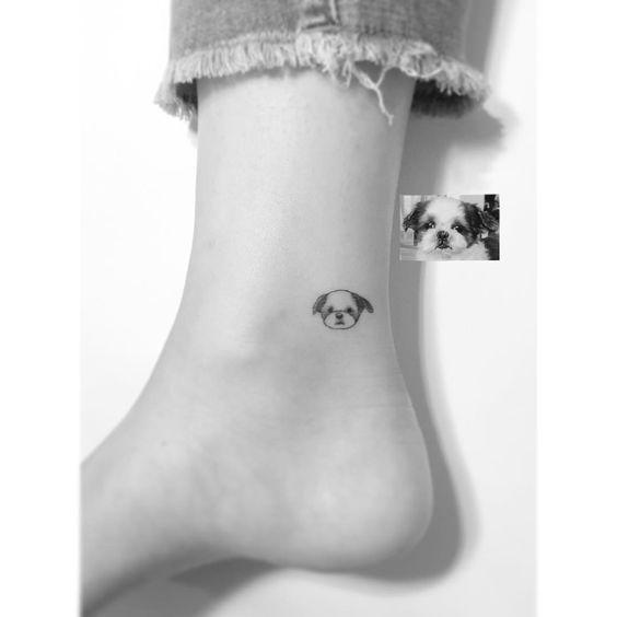 tatuagem de shih tzu contornos