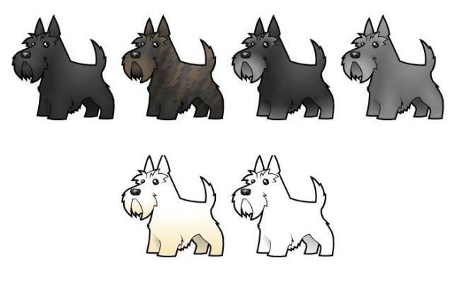 Scottish Terrier cores