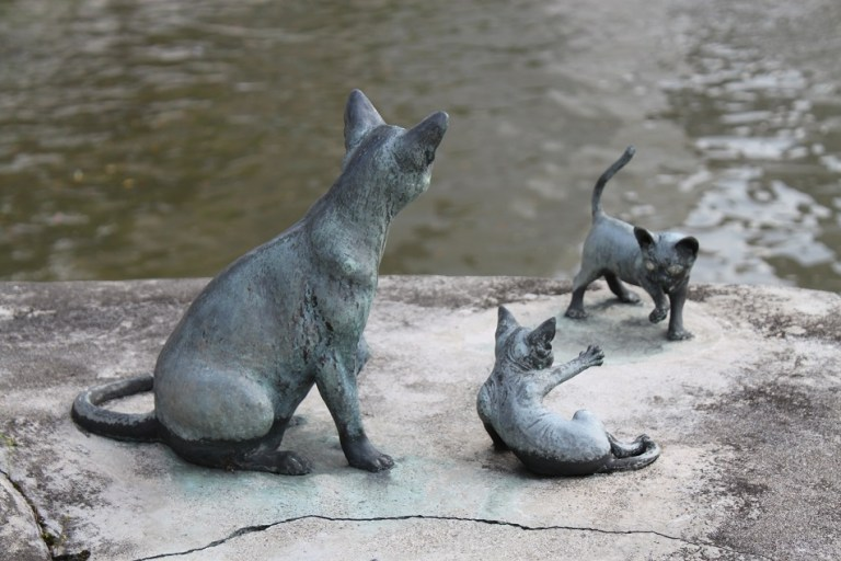 Gato Singapura estátuas