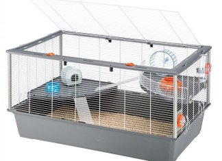 Choose a larger hamster cage