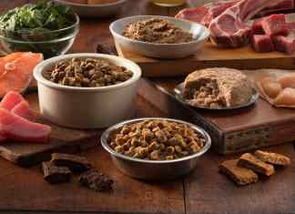 Meat and fish in grain free dog food