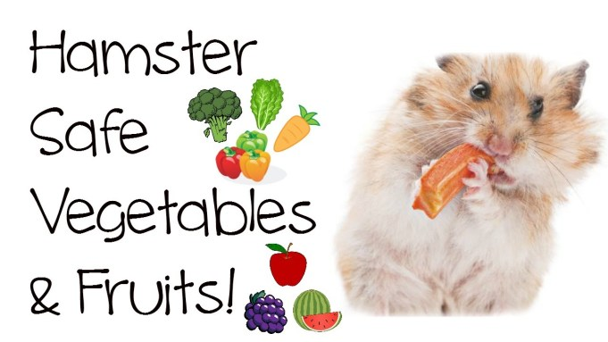 Vegetables Hamsters Can Eat