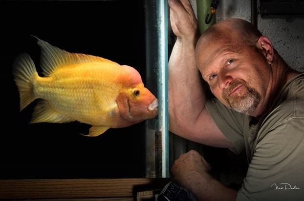 Are Fish Losing Popularity as Pets Because Selfies Are Difficult?