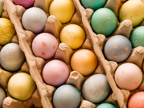 The Easter Egg: A Pet's Friend or Foe?